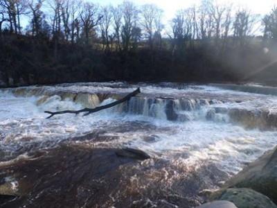 Linda Radin - Richmond River 2
