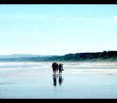 AugustStevie Arnold - Filey beach this last week been beautiful weather