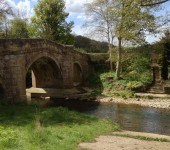 Deborah Robson - The bridge at Rievaulx Abbey
