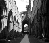 David Devonport - Kirkstall Abbey, Leeds