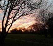Jayne Heffalump Broadhead - Armley Moor, Leeds