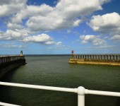Martin Thacker - Whitby Harbour