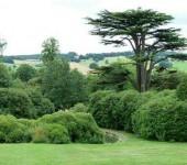 Phil Bennett - Yorkshire Sculpture Park 2