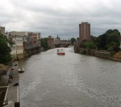 york from andy dewhirst