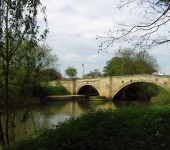 york from donna gaby basily 4