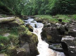 The Strid. A section of the River Wharfe known and feared for it's deadly undercurrent.