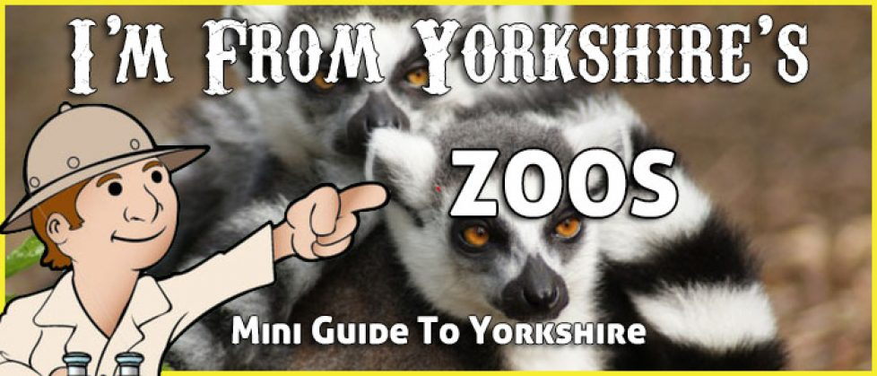 Zoos in Yorkshire - Guide