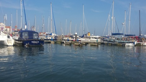 Scarborough Harbour is always bustling with activity. Picture credit: Jonathan Rudd