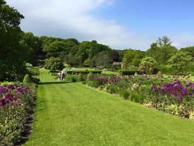 Harlow Carr Gardens are a lovely outdoor attraction in Harrogate. Picture credit: Carol Law (IFY community)