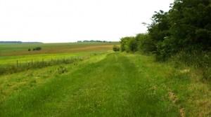 Hawold bridle road near huggate