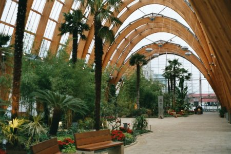 The winter gardens are a great retreat. Picture credit wikipedia public domain.