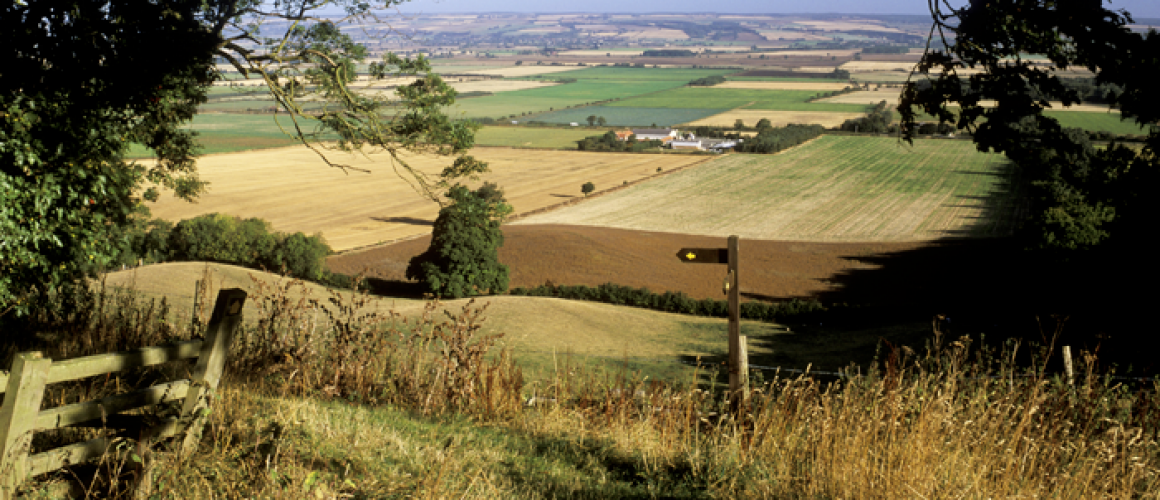 WOLDS-WAY