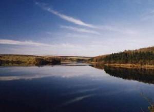 Not bad for starters- Fewston reservoir