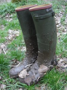 yorkshire day wellies