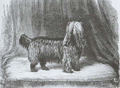 23rd-sept-1871-huddersfield_ben