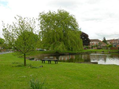 ponds-wiggington-stuart-fiona-jackson-geo-cc