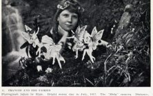 legends-cottingley-fairies